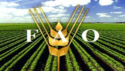 """В Україні FAO розпочало роботу в рамках """"Надзвичайної програми"""" в 2015 році, після початку військового конфлікту на сході, допомагаючи Луганській і Донецькій областях"""