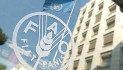 В FAO решили помочь 20 группам агропроизводителей в зоне, которые уже формально зарегистрированы как кооперативы или только на пути юридической регистрации