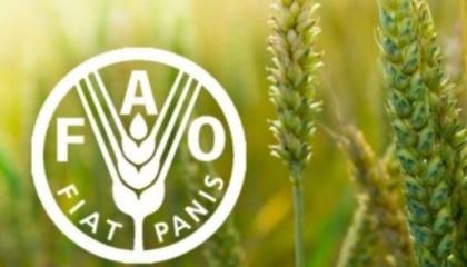 FАО выпустило новое справочное пособие «Интегрированная защита растений от основных вредителей и болезней в Восточной Европе и на Кавказе»