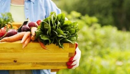 Фермер в 14-м поколении из Германии Михаэль Дильман основал под Тлумачом в Ивано-Франковской области демонстрационную ферму, чтобы делиться технологиями органического земледелия