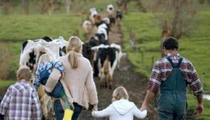 """Кожна з ферм розрахована на 20 голів ВРХ і має забезпити стабільне виробництво і постачання молока першого ґатунку через СОК """"Молочний світанок"""""""