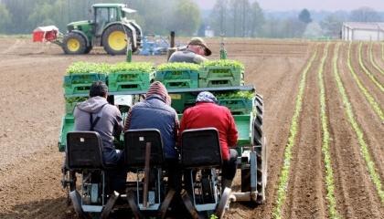 Фермеры получают наибольшую прибыль с гектара именно на арендованных землях. Потому что это вопрос финансового баланса: если есть больше ресурсов для инвестиций в структуру производства и в технологию, значит и есть лучшие результаты