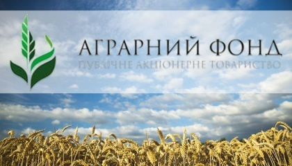 """ПАТ """"Аграрний фонд"""" планує запустити паралельно з форвардом інструмент, який дозволить компанії залучати кошти - мова йде про ф'ючерс на пшеницю"""
