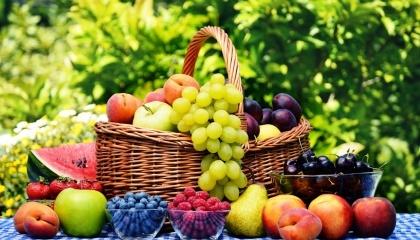 Внаслідок травневих заморозків ситуація з урожаєм яблук і груш, а також ягід в Україні ще не зовсім зрозуміла
