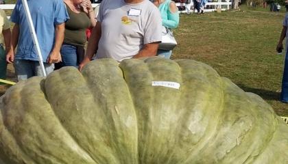 Американський фермер зі штату Род-Айленд Джо Джатрас став першим у світі овочівником, який виростив рекорди в трьох номінаціях
