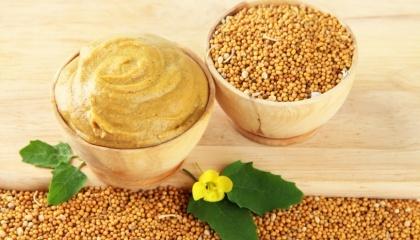 Экспорт семян горчицы из Украины является достаточно слабо концентрированным по основным игрокам видом деятельности