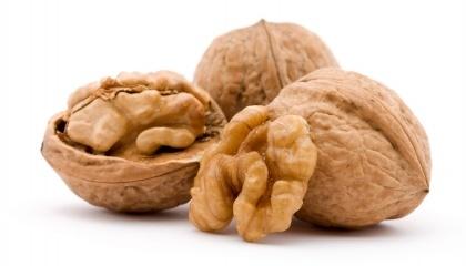 На сьогодні виробництво горіхів роздроблено за структурою. Це заважає як ефективному виходу на зовнішні ринки, так і впорядкуванню роботі цієї галузі на внутрішньому ринку