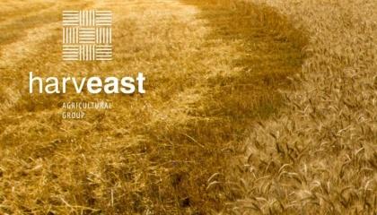"""Генеральный директор HarvEast Дмитрий Скорняков: """"Мы продолжаем делать ставку на бобовые культуры. 2016-й стал пилотным - мы использовали его для выращивания семенного материала и наработки технологий"""""""