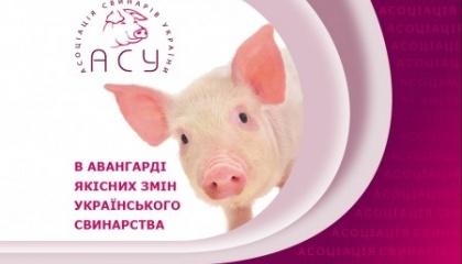 """Після закриття російського ринку, куди потрапляло близько 50 тис. т продукції свинарів, експорт за обсягами """"обвалився"""" в рази. Свинарі активізувалися і з'явилися цікаві напрямки"""