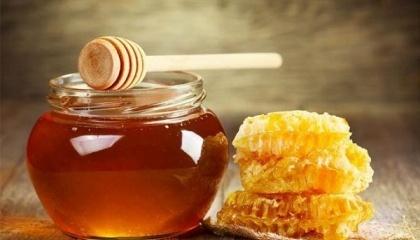 Сначала специалисты FAO планируют создать базы для обучения, найти несколько людей и раздать им материалы, чтобы они сумели производить мед сообща и делились опытом