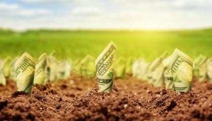 Думка про значне збільшення інвестицій, включаючи іноземні, в сільгосппідприємства після відкриття ринку сільгоспземель, є значно міфологізована