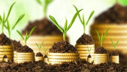 Хоча агропромисловий комплекс не може бути локомотивом української економіки вічно, зараз це саме той сектор, який міг би залучати інвестиції і надати імпульс для розвитку інших галузей