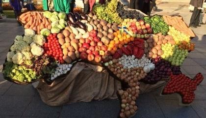 В сезоне-2016 украинское плодоовощеводство вступило в новую фазу развития и активизировало свой экспортный потенциал, - Т.Гетьман