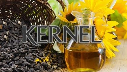 Найкрупнейшім експортером української соняшникової олії, як і шроту/макухи соняшнику, за підсумками минулих місяців сезону 2016/17, залишається «Кернел», чия частка в загальному обсязі експорту зазначених видів продукції коливається близько 21-22 %