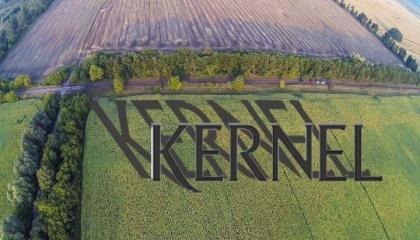 """Агрохолдинг """"Кернел"""" має намір побудувати ще один завод з переробки соняшнику в 2018 - 2019 роках - на Західній Україні"""