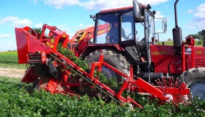 Современные производители сельхозтехники предлагают комбайны, позволяющие качественно собрать урожай ягод в течение считанных дней, нанеся минимальный ущерб плантации