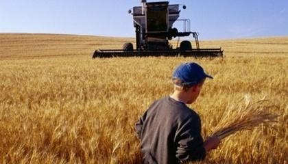 Весняно-польові роботи українських аграріїв в поточному році обійшлися в рекордні 100 млрд грн, при тому, що уряд за рахунок бюджетних коштів компенсувало їм лише мінімум витрат