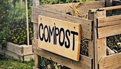 Компостування – це не тільки виготовлення якісних добрив, з оптимальним співвідношенням елементів живлення, обеззаражене від збудників хвороб та насіння бур'янів, це ще й джерело корисної мікрофлори, яку ми вносимо в ґрунт