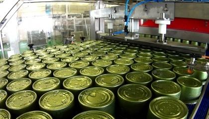 Сейчас идет поиск инвесторов для запуска производства на консервном заводе в селе Медвин Богуславского района