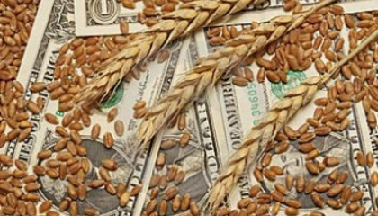 Если в 2013 г. для экспорта зерна требовалось шесть обязательных документов и разрешений, то сейчас - только один