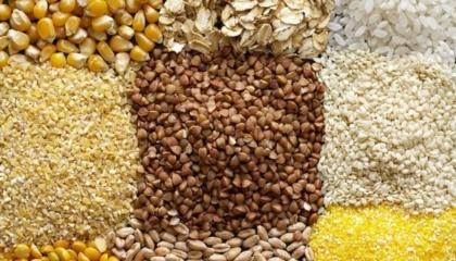 Найбільшим викликом на світовому ринку є великі залишки сільгосппродукції з минулого року, особливо пшениці і кукурудзи