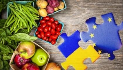 На беспошлинных квотах Евросоюза зарабатывают прежде всего крупные производители