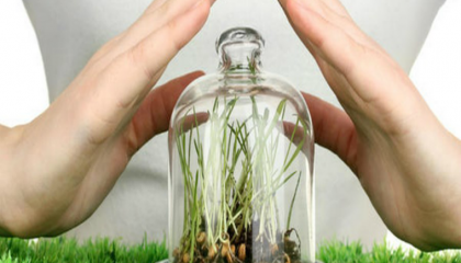 В компании UKRAVIT параллельно с химической защитой растений активно изучают вопросы биозащиты, чтобы пополнить свой портфель биопрепаратами