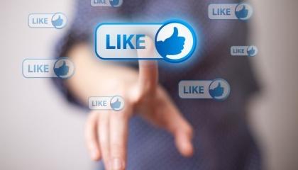 Власники переробних підприємств не дуже актовно ведуть сторінки у соціальних мережах. Стала база постачальників сировини та дистриб'юторів виключає потребу в активній рекламі