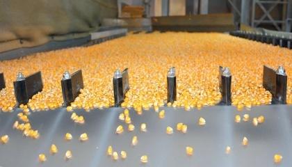 Реалізація проекту дозволить зробити виробництво більш продуктивним і незалежним, дасть можливість скоротити терміни жнив, підвищити якість зібраного врожаю і зберегти насіння в кращих умовах