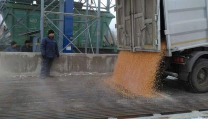 Перевантажувальний термінал, скооперувавшись, побудували кілька аграрних фірм регіону, щоб вирішити проблеми з реалізацією зерна