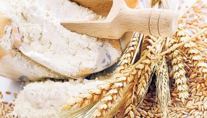 По итогам 2016/17 МГ внутреннее потребление зерновых и зернобобовых культур в Украине оценивается аналитиками на уровне 24,2 млн т
