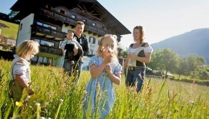 Для привлечения туристов на ферму, важно предлагать различные виды развлечений