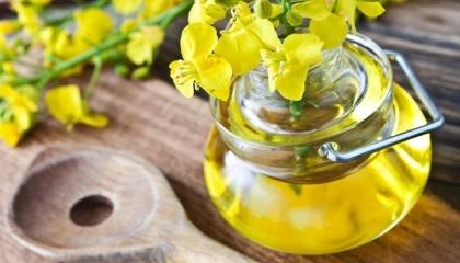 Українську соєву олію імпортували 29 країн