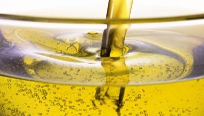 За прогнозами експертів, в 2017 році переробка олії в морських портах країни може вирости до рекордних 5,5 млн т і більше