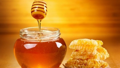 Согласно областной программы развития аграрного сектора Полтавщины на 2016-2020 годы, на развитие пчеловодства в 2016 году предусмотрено 520 тыс. грн