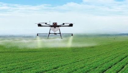 В сезоне-2016 были зафиксированы случаи полного уничтожения посевов от использования некачественного гербицида, отсутствие эффекта от поддельных инсектицидов и фунгицидов