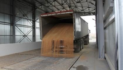Расширенный объект способен вместить 70 тыс. т зерновых и перваливать от 300 тыс. т до 800 тыс. т в год, или 75% годового экспорта зерновых Молдовы