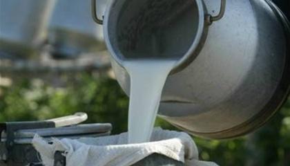 """Виробники молока відерто заявили, що вони не готові поки """"відкривати карти"""" і говорити про свою собівартості для того, щоб складати довгострокові контракти"""