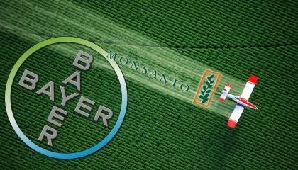Monsanto и Bayer