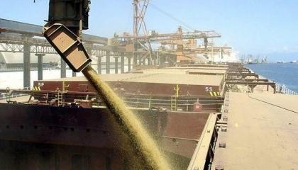 Адміністрація морських портів України (АМПУ) в українських портах реалізує ряд проектів, які допоможуть істотно поліпшити зернову логістику і збільшити обсяги перевалки зернових вантажів