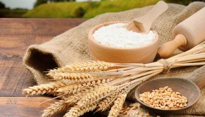 Україна значно наростила свої можливості з торгівлі зерном, ми входимо в трійку найбільших зернотрейдерів. Але в той же час, країна дуже далеко від 10-ки з експорту переробленої продукції