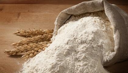 На тонну українського зерна витрачається приблизно $100 матеріальних затрат – це насіннєвий матеріал, добрива, пестициди, амортизація сільгосптехніки, елеваторні послуги тощо