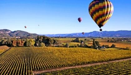 Один з найуспішніших кластерів у світі - Napa Valley, винна столиця США, яка об'єднує понад 400 винарень, 105 готелів і 125 ресторанів