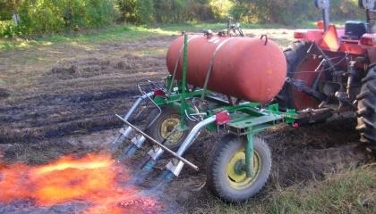 Для тех, кто занят органическим сельским хозяйством, огневой культиватор является универсальным средством для борьбы с сорняками в посевах полевых и овощных культур, многолетних насаждениях и пустырях