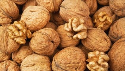 Найбільше, серед країн СНД, волоських горіхів зібрали в Україні, Узбекистані та Молдові