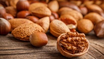 Экономические расчеты показывают, что грецкий орех и фундук имеют примерно одинаковую рентабельность