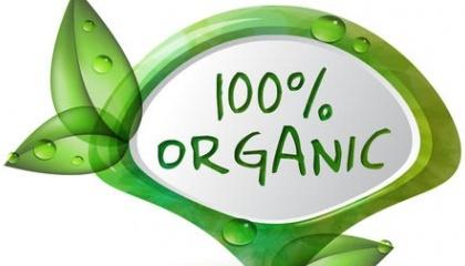 Украина, по данным эксперта «КьюС», входит в десятку мировых производителей органических зерновых и масличных