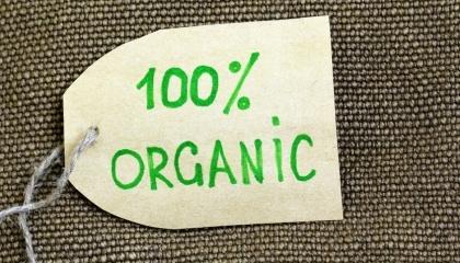Объем украинского рынка органических продуктов, который в 2016 году составил €21,2 млн, по итогам текущего года может вырасти на 20%