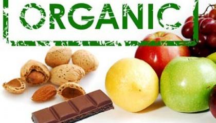 Сегодня высокомаржинальные органические позиции - это продукты переработки, подсолнечный жмых, соевый и рапсовый шрот. Это продукты с добавленной стоимостью