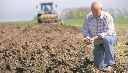 Под органическое направление сельскохозяйственного производства в Украине, согласно имеющихся статистических данных, сертифицированы 421 тыс. га угодий